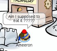 pin-ameeron1