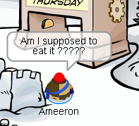 pin-ameeron